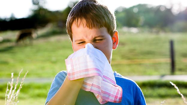 Ein blondhaariger Bub schnäuzt sich mit einem grossen Taschentuch die Nase.