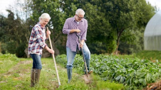 Zwei Leute arbeiten im Garten.