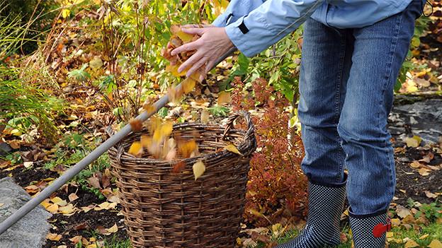Füsse in Gummistiefeln neben einem Korb voller Herbstlaub.