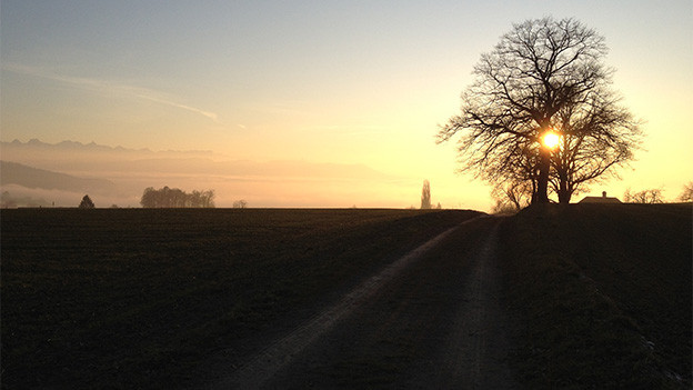 Sonnenuntergang in einer ländlichen Gegend.