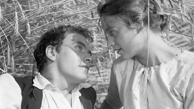 Filmszene mit einem Mann und einer Frau, die in einem Getreidefeld liegen.