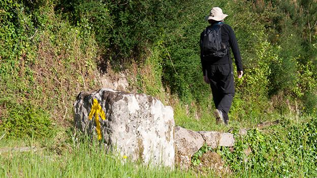 Ein einsamer Wanderer am Wegesrand.