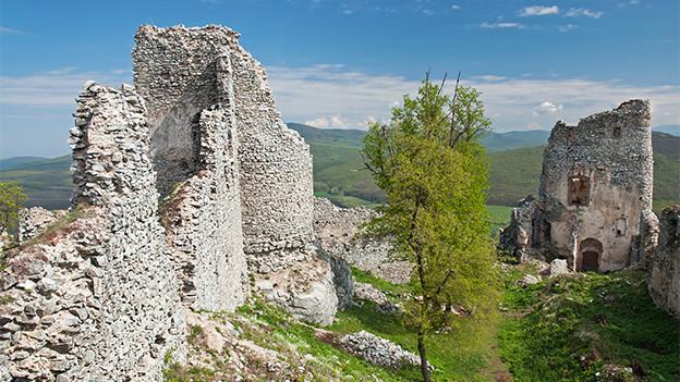 Überreste einer mittelalterlichen Burg.