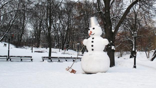 Ein Schneemann in einer Schneelandschaft.