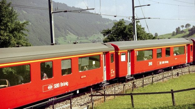 Zug fährt durch Berglandschaft.