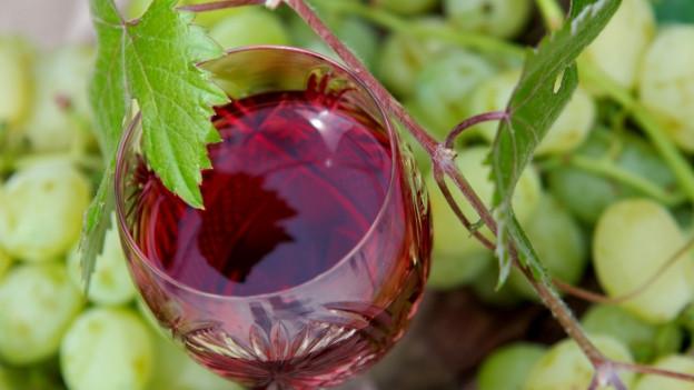 Trauben und ein Glas Wein.