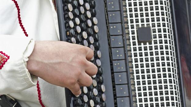 Eine Person spielt auf dem Akkordeon.