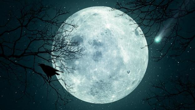 Der Vollmond leuchtet in der Nacht.