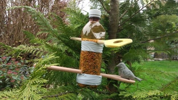 Vogelfutter in einer Petflasche.