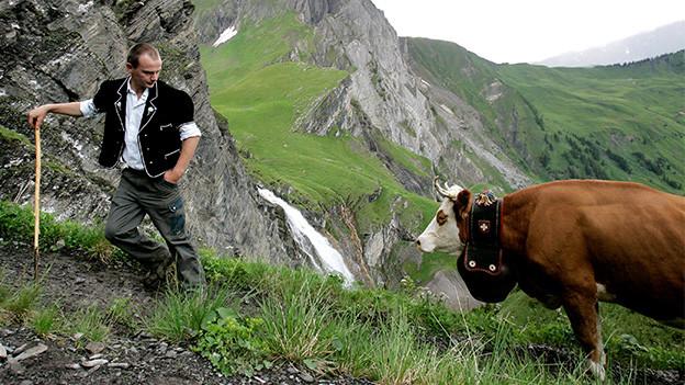 Ein Senn wartet beim Alpaufzug auf seine vom Aufstieg müde gewordene Kuh.