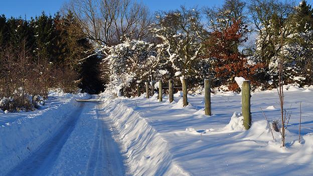 Winter-Landschaft mit viel Schnee.