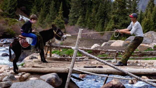 Junge sitzt auf störrischem Esel. Mann versucht ihn mit Seil über eine Brücke zu zerren.