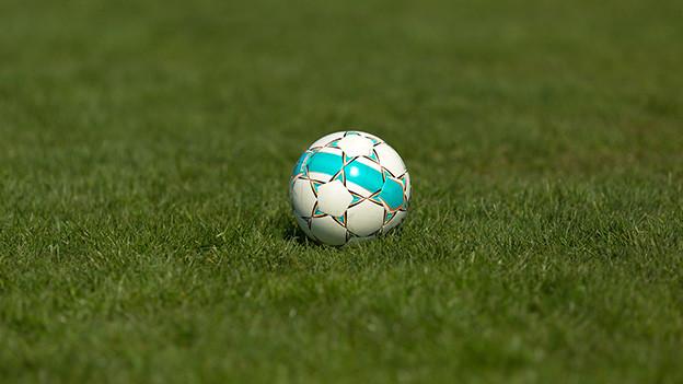 Ein einzelner Fussball auf einem Rasen.