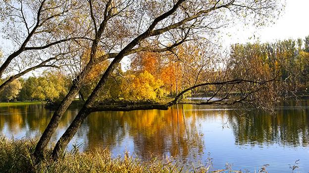Herbststimmung am See.