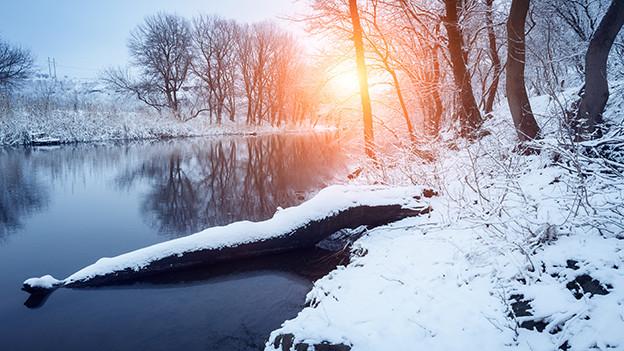 Winterlandschaft mit Fluss und Bäumen.