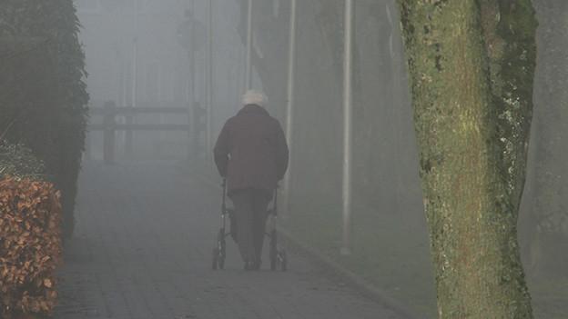 Eine Frau mit Rollator auf einem Spaziergang.
