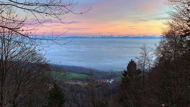 Nebelmeer.