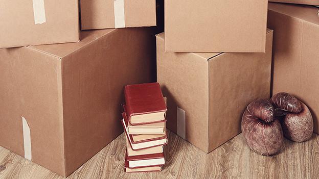 Ein kleiner Stapel Bücher vor vielen Kartonschachteln.