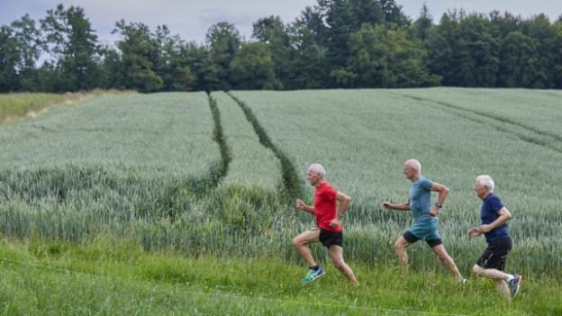 Drei Senioren beim Jogging.