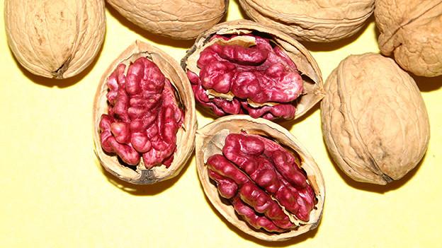 Offene Schalen mit roten Baumnüssen.
