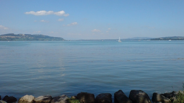 Blick über einen See.