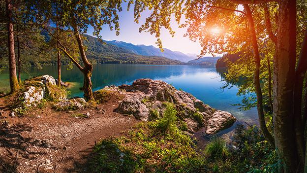 Ein sonniger Platz an einem See.