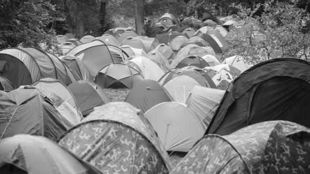 Viele Zelte stehen auf einer Wiese.
