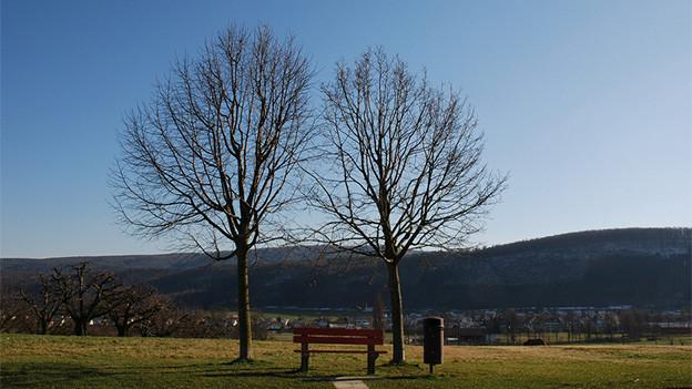 Eine Bank zwischen zwei Bäumen mit Blick auf ein Dorf.