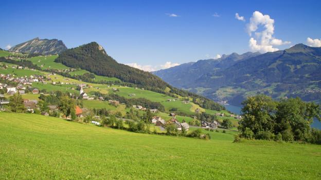 Toggenburger Landschaft mit Wiese und Berge.