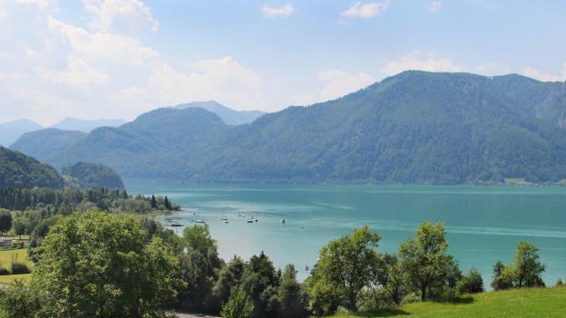 Blick über ruhigen See.