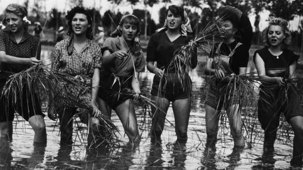 Frauen bei der Arbeit auf einem Reisfeld.