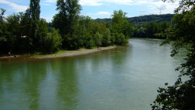 Reuss-Fluss mäandriert.